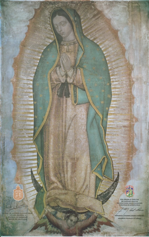 our-lady-of-guadalupe-crop
